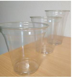 CLEAR CUPS 0,2 RPET 9OZ 50x